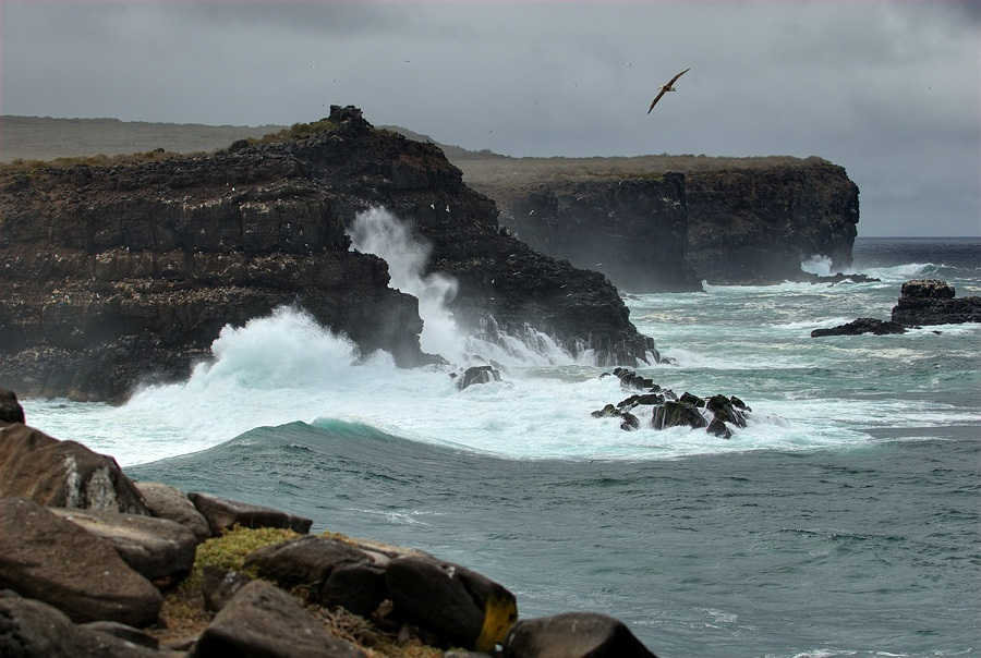 Galapagos_Islands_TOCK